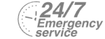 24/7 Emergency Service Pest Control in Westcombe Park, SE3. Call Now! 020 8166 9746